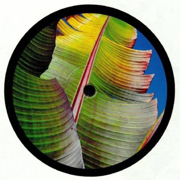 KH aka Four Tet - Only Human - Vinyl at OYE Records